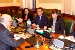 Parlamentarne aktivnosti poslanice Zelene stranke