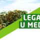 Pravo na lek – dekriminalizacija teško bolesnih
