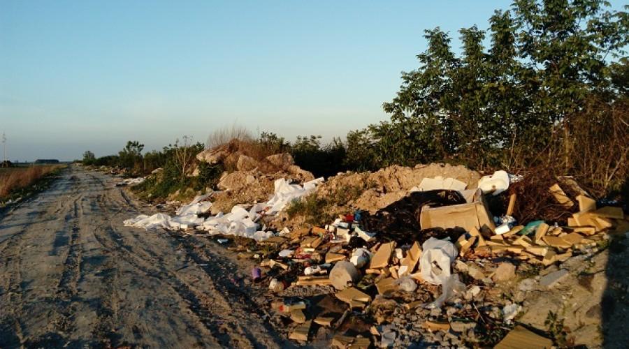 Deponija u Borči (2)