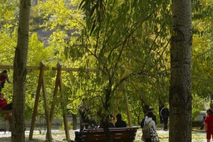 Za zelene gradove i ulice bez nasilja