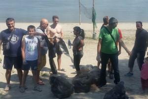 Novosadski odbor Zelene stranke u akciji čišćenja gradskih plaža
