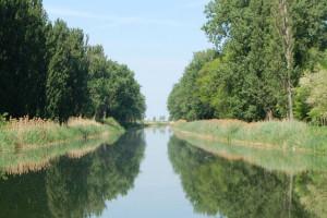 Zelena stranka - 22. mart Dan voda