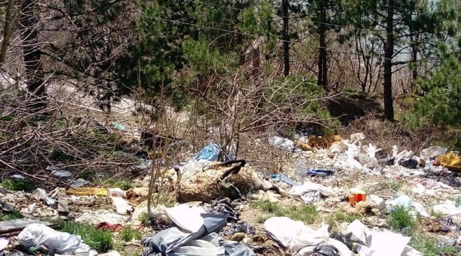 Deponija u Priboju (4)