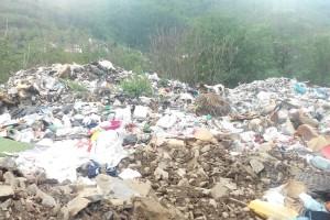 Zelena stranka traži rešenje za divlje deponije u Srbiji