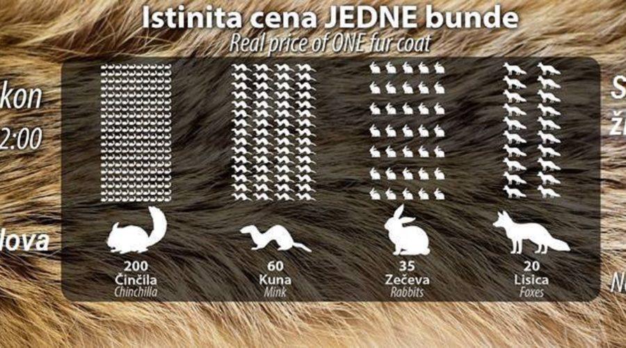 Odbranimo zakon – za Srbiju bez krzna 2017.