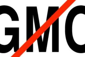 Još jedna uspešna nedelja kampanje MISLI – STOP GMO
