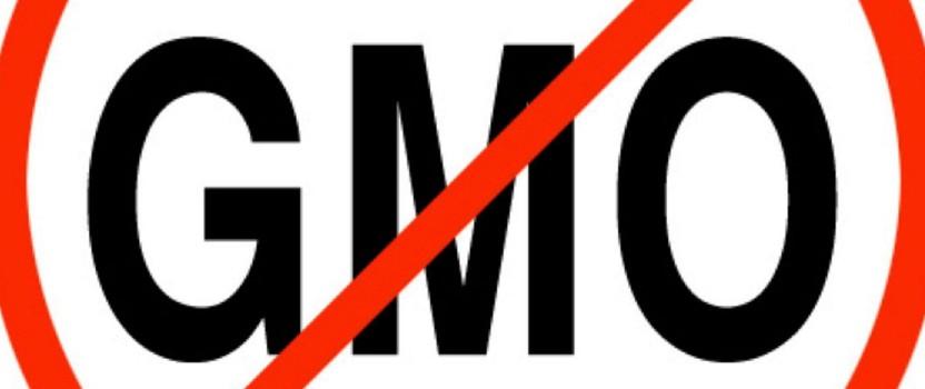 Blog: GMO: diskurs kriminogene moći