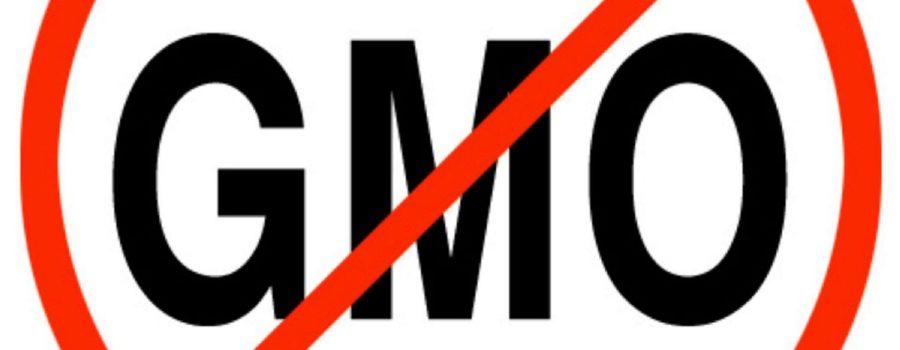 Blog: Srbija je protiv genetički modifikovane hrane