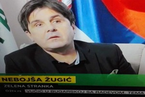 Zelena stranka - Goran Čabradi - Koga brine rast zelene stranke