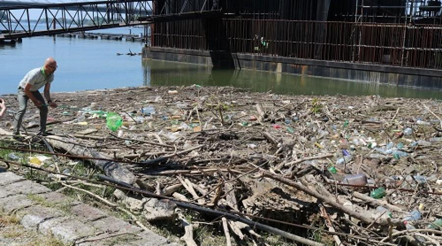 Zelena stranka u akciji čišćenja (3)