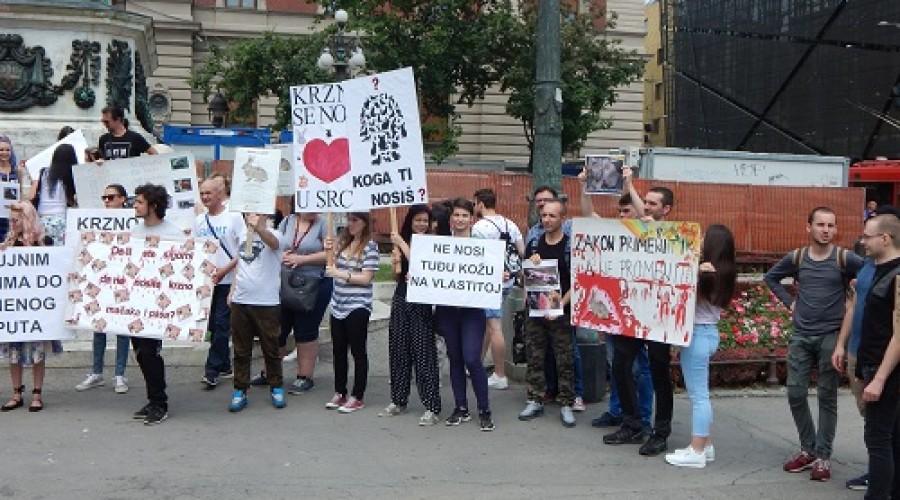 Marš protiv krzna (4)