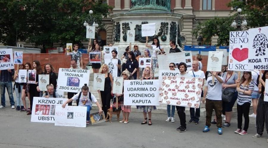 Marš protiv krzna (5)