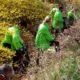U četiri grada Zelene brigade sakupile preko 1.500 kg smeća