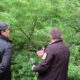 Zelena stranka u kontroli seče drveća na Fruškoj gori